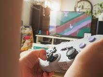 Video Game Use is Associated With Problem Behaviours in Boys With Autism Spectrum Disorder (ASD)