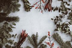 Managing Stress During the Holiday Season Webinar